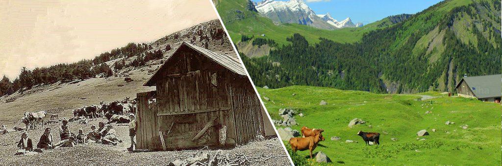 La Grande Histoire des Alpages en Pays de Savoie